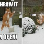Throw it, I'm open, f**k