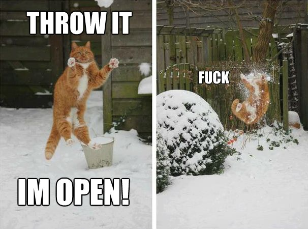 Throw it, I'm open, f**k