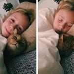 dormir à coté de son chat, bien bordés sous la couette