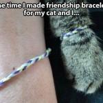 Bracelets de l'amitié !