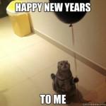 Bonne année 2016 à tous les petits chats !