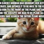 le chaton qui s'échappe et se cache dans un avion ….